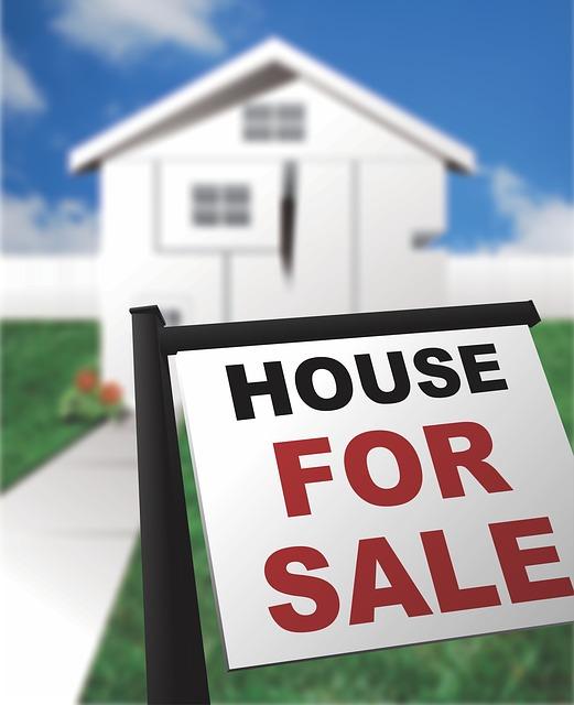 Home buyer CCTV drain surveys